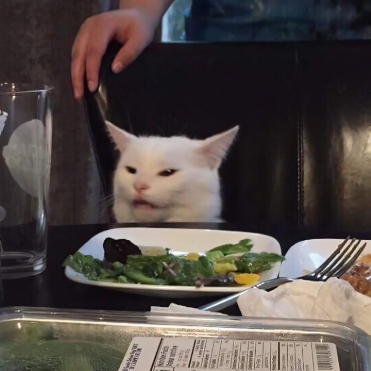 Кот Онуфрий